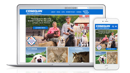 Cosequin.com (Web/Mobile Design)